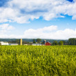 Stock Photo: Field with Blurry Farm Buildings in background