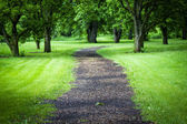 WalkWay in the park — Stock Photo
