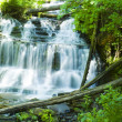 Waterfall in green forest, Michigan USA — Stock Photo #6593707
