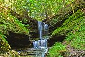 Şelale yeşil orman, michigan, Abd — Stok fotoğraf