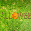 halloween background — Stockfoto