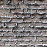 Urban Background (Brick Wall) — Stock Photo #6694452