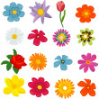 Set of flower graphics vector — Stock Vector