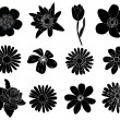 Set of black flower design elements — Stock Vector #5797031