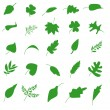 Stock Vector: Green leaf icons set. Nature & ecology image.