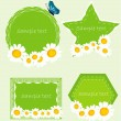 Set banners with camomille. Vector — Stock Vector