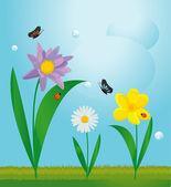 夏の花のデザイン — ストックベクタ