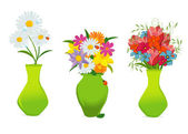 Three beautiful flowers in colorful vases vector — Stock Vector