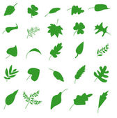 Green leaf icons set. Nature & ecology image. — Stock Vector