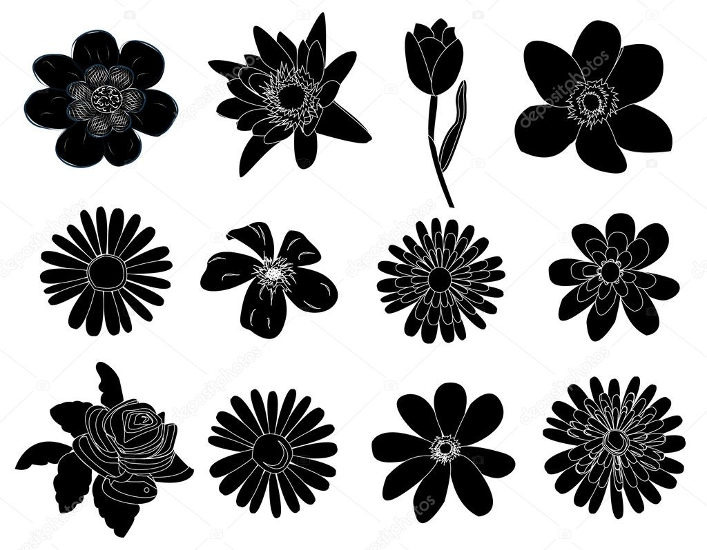 Set of black flower design elements — Stock Vector © joinanita