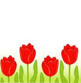 Scheda di primavera tulipano rosso — Vettoriale Stock