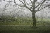 Es ist nass draußen — Stockfoto
