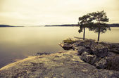 İsveçli göl retro — Stok fotoğraf