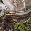 Stock Photo: Scrap car in the nature