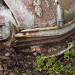 Scrap car in the nature — Stock Photo