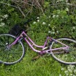 Bike in roadside — Stock Photo #5902540