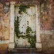 Retro croatian door — Stock Photo