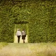 Stock Photo: Couple and hedges