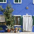 Blue house Burano — Stock Photo #5902774