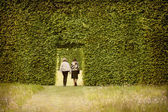 Couple and hedges — Stock Photo