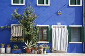 Blue house Burano — Stock Photo