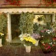 Florist - Veneto — Stock Photo