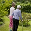 Stock Photo: Seniors in garden