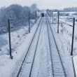 Winter train Denmark — Stock Photo