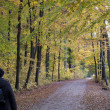 Autumn walk — Stock Photo