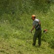 Man cutting high grass - Stock Photo