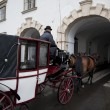 Horse cab by Hofburg — Stock Photo #6574111
