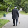 Stock Photo: Senior walk in park
