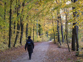 Senior autumn walk — Stockfoto
