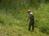 Man cutting high grass — Stock Photo