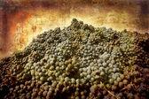 Nebbiolo grapes Piedmont — Stock Photo