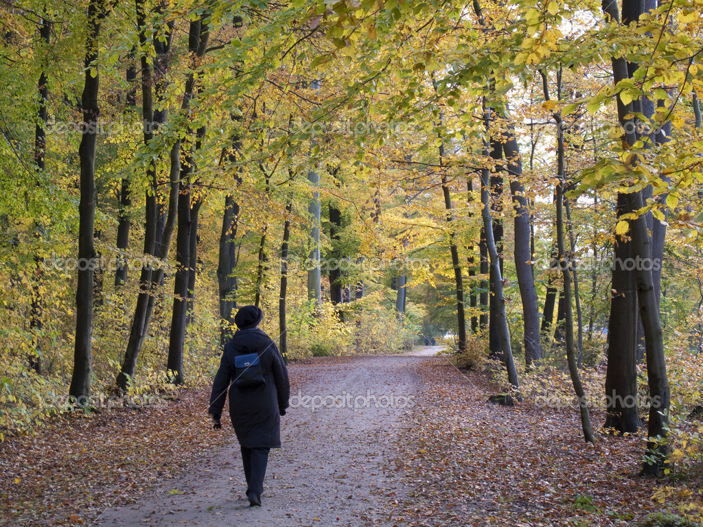 Senior autumn walk in the wood - Denmark. — Stock Photo #6573869