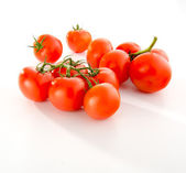 Isolated tomatoes on white background — Stock Photo