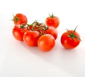 The bunch of tomatoes isolated on white background — Stock Photo