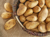 Basket of fresh tasty potatoes placed on the sack — Stock Photo