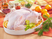 Raw turkey in the bowl — Stock Photo