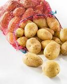 Sack of fresh potatoes — Stock Photo