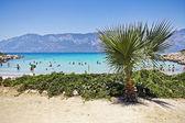 Paradise tropic island — Stockfoto