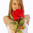 Love is a red rose — Stock Photo #5935067