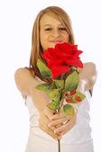 Lycka kärlek och röda rosor — Stockfoto