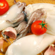 Clumps of squid — Stock Photo
