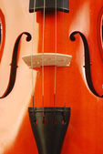 Viool 003 — Stockfoto
