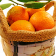 Small basket of mandarins — Stock Photo