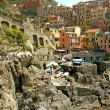 View of Manarol(Cinque Terre - Liguria) — Stock Photo #6063781