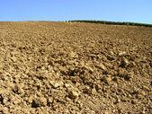 Arado campo - toscana - italia — Foto de Stock