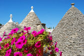 The Trulli of Alberobello - Apulia - Italy — Stock Photo